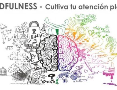 Webinar «Gestión emocional ante el COVID-19: introducción al mindfulness»